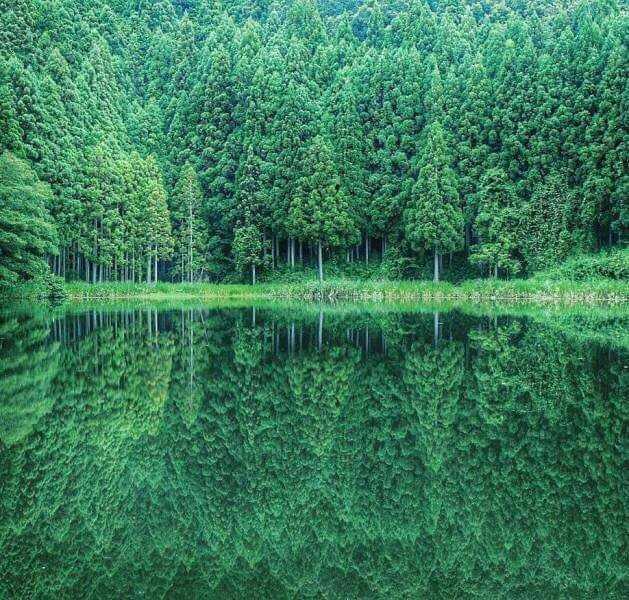 2. Природа идеальна без фотошопа без фотошопа, идеально, красиво, фото