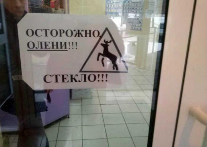 Олени - это как-то чересчур. | Фото: Pure-t.ru.